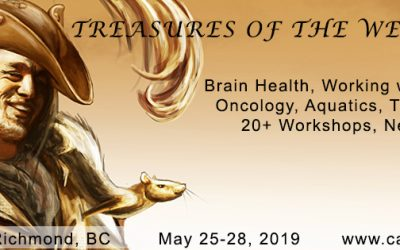 58th CALAS/ACSAL Annual Symposium 2019