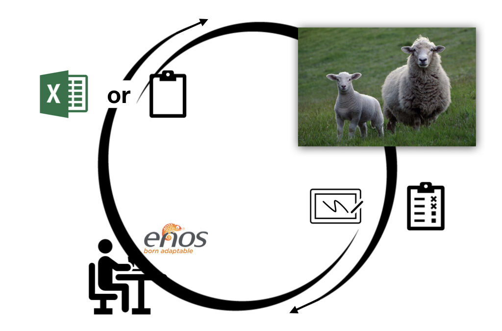 When circumstances demand paper or spreadsheets, enos has the solution!